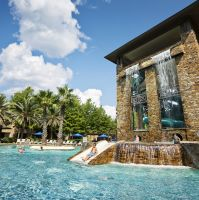 A water slide and outdoor pool surrounded by palm trees.